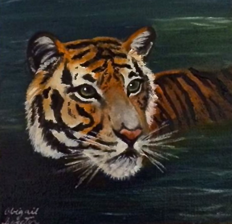 Title:Tiger in Water Medium:	Oil on Linen Size:	6x6