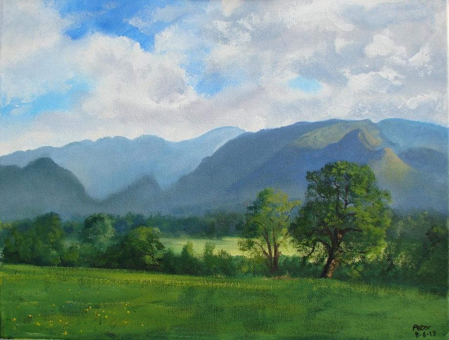 Title:Plein air sketch - Derwent Valley 8.6.13 Medium:Oil Size:36x46 cms