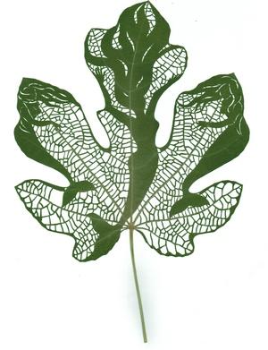 Title:Freedom Dance Medium:Plant Leaf, Epoxy Size:26.5 x 18cm
