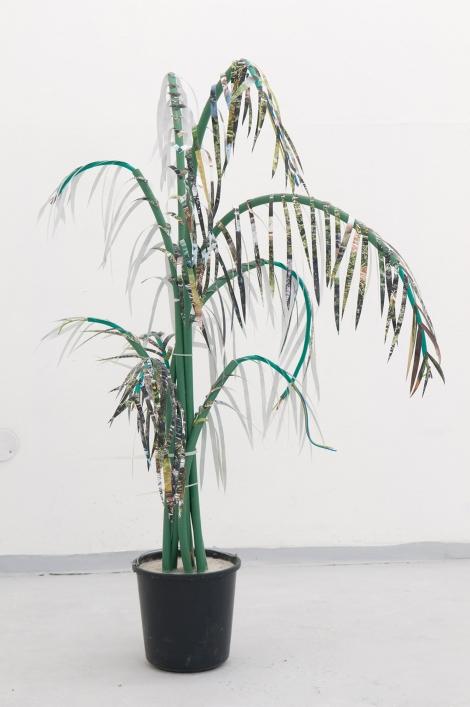 "Title:The Palm Tree Medium:Rubber tubes, photos, cement, bucket Size:58 x 38 x 26"""