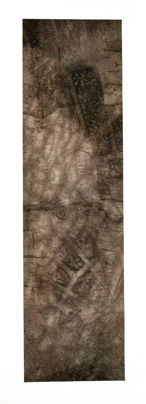 Title D I   Medium Mezzotint, Photo Etching, and Silk Chine Colle   Size 42 in x 16 in