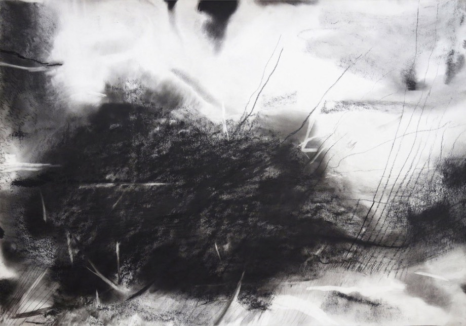 Title: untitled Medium: charcoal on paper Size: 74 x 104 cms